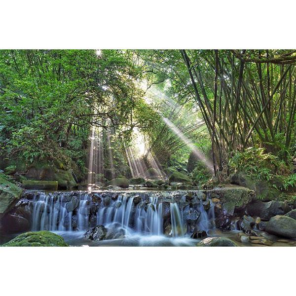 【新北│土城龍泉溪】就是那道光!!季節限定的神祕之境,令攝影師瘋狂的斜射光!