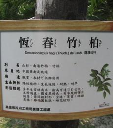 原生植物園