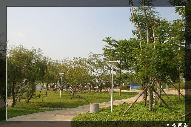 台中文心森林公園