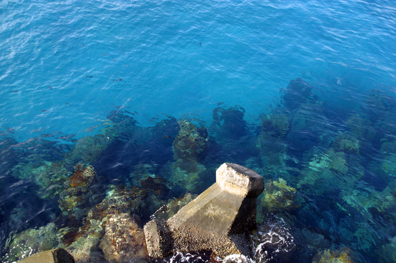 綠島系列-南寮漁港