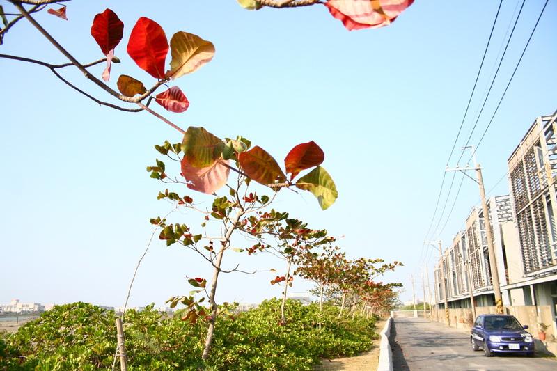 鹽田生態文化園區