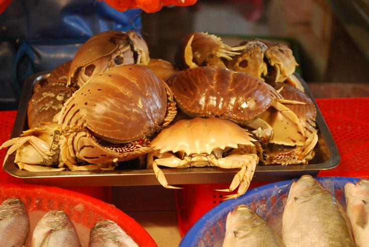 蚵仔寮觀光漁市