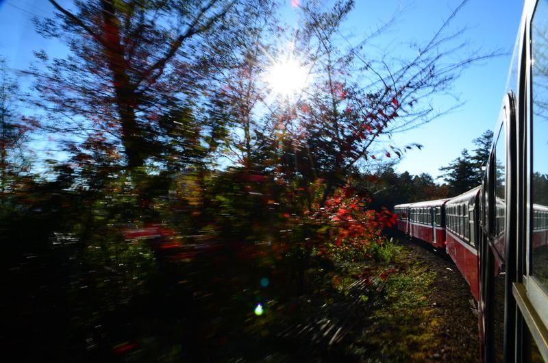 阿里山系列-祝山車站♬