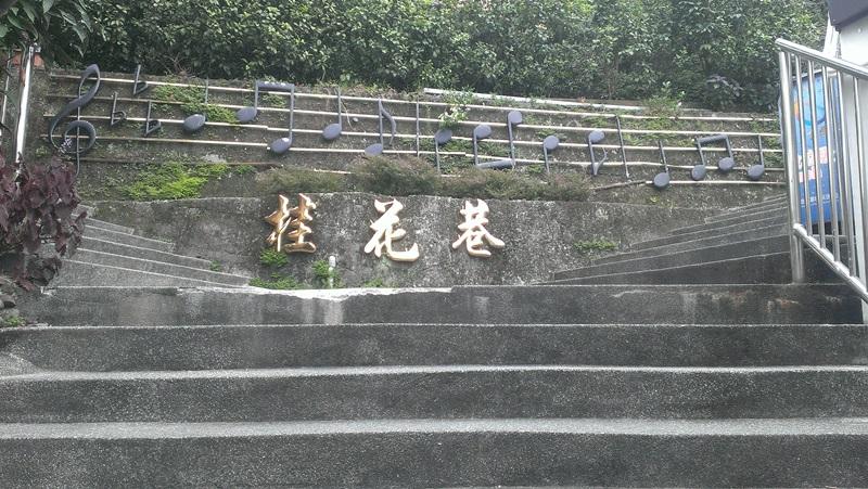 苗栗南庄桂花巷