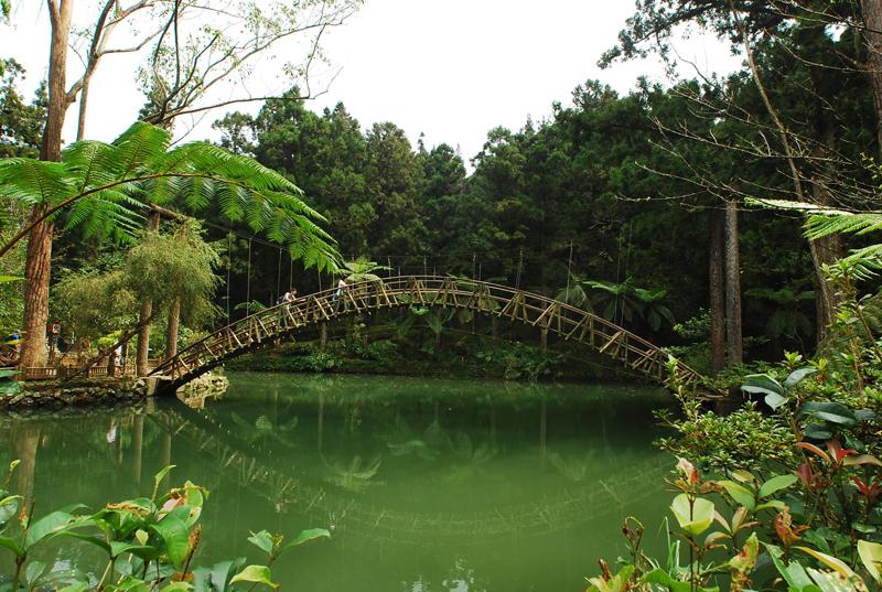 溪頭風景區