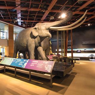國立臺灣史前文化博物館