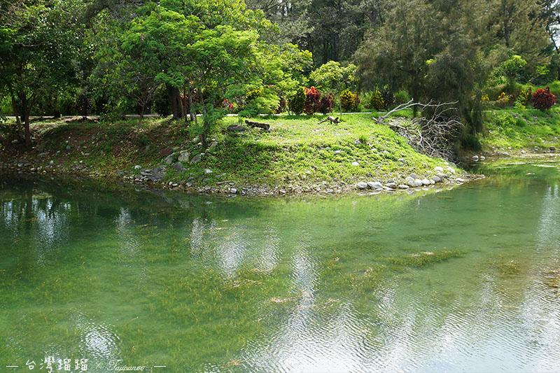 台東 琵琶湖2