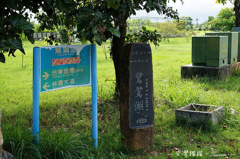 台東 鷺鷥湖