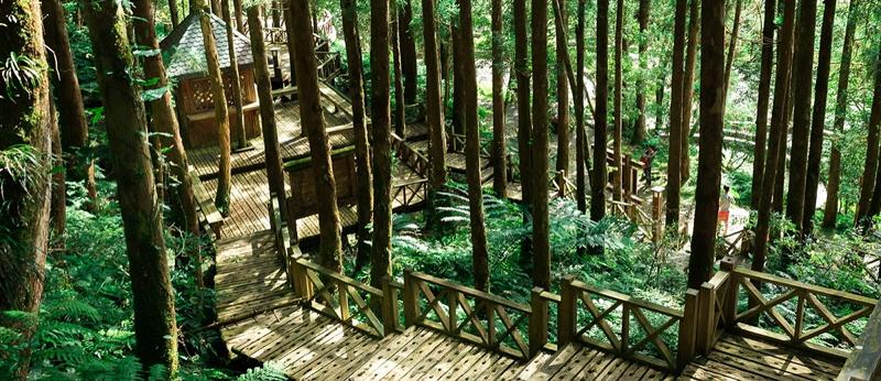 力麗馬告生態園區