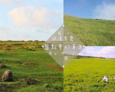 【綠浪來襲】夢幻大草原在這裡!盤點台灣五大草原,仰躺於大自然溫柔的懷抱